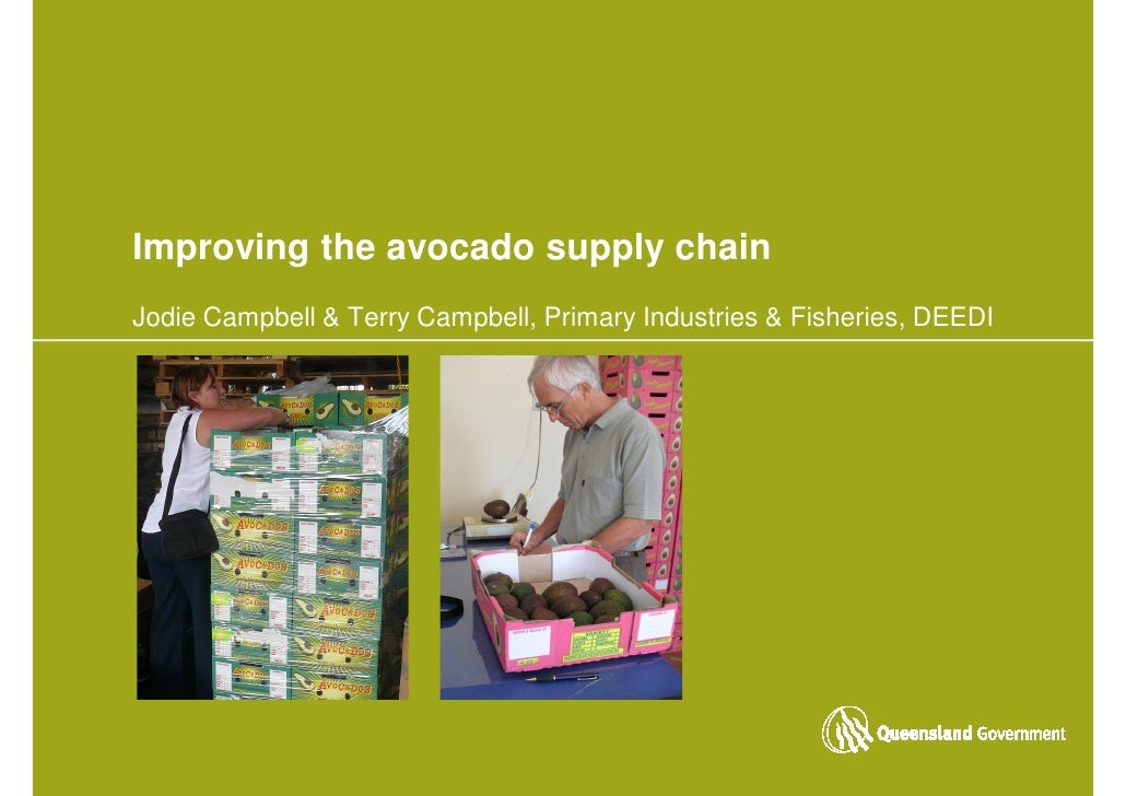Improving the avocado supply chain Jodie Campbell & Terry Campbell, Primary Industries & Fisheries, DEEDI