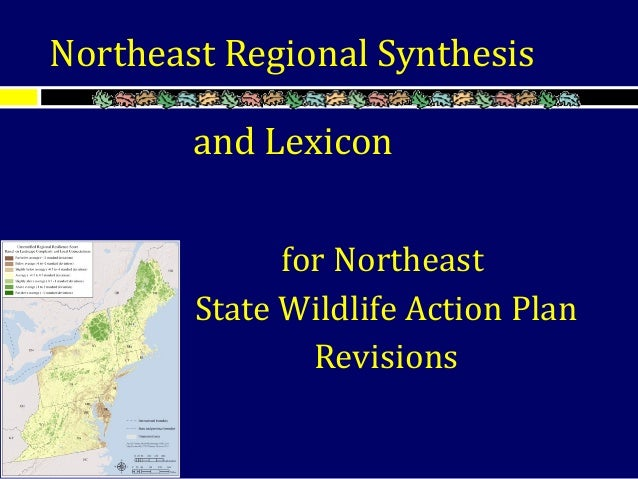 and Lexicon for Northeast State Wildlife Action Plan Revisions Northeast Regional Synthesis