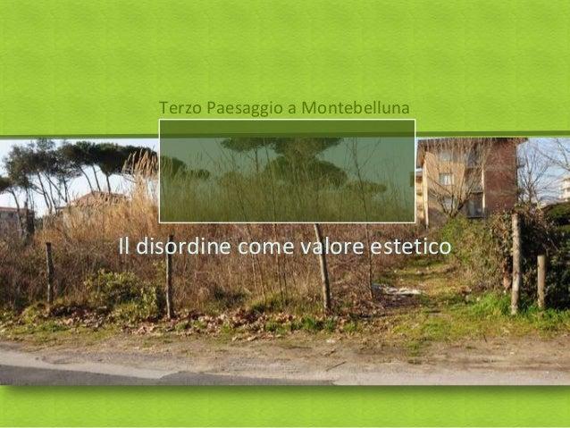 Terzo Paesaggio a MontebellunaIl disordine come valore estetico