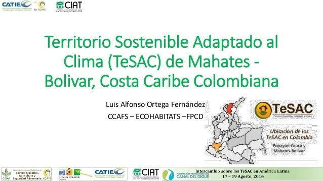 Territorio Sostenible Adaptado al Clima (TeSAC) de Mahates - Bolivar, Costa Caribe Colombiana Luis Alfonso Ortega Fernánde...