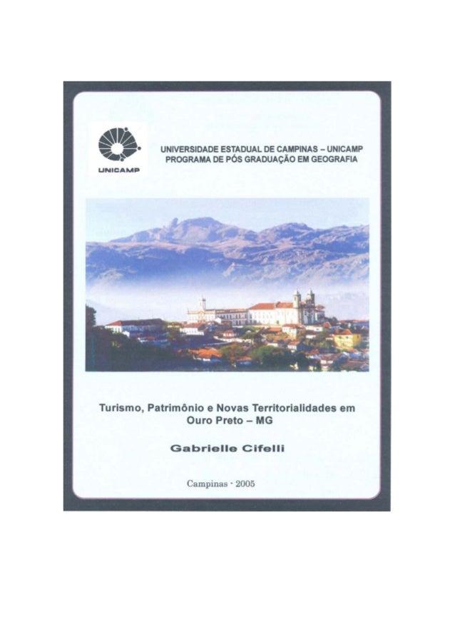 i Número: 17/2005 UNIVERSIDADE ESTADUAL DE CAMPINAS INSTITUTO DE GEOCIÊNCIAS PÓS-GRADUAÇÃO EM GEOGRAFIA GABRIELLE CIFELLI ...