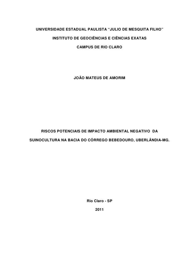 """UNIVERSIDADE ESTADUAL PAULISTA """"JULIO DE MESQUITA FILHO""""         INSTITUTO DE GEOCIÊNCIAS E CIÊNCIAS EXATAS               ..."""