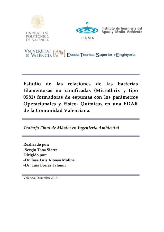 Valencia, Diciembre 2013. Estudio de las relaciones de las bacterias filamentosas no ramificadas (Microthrix y tipo 0581) ...