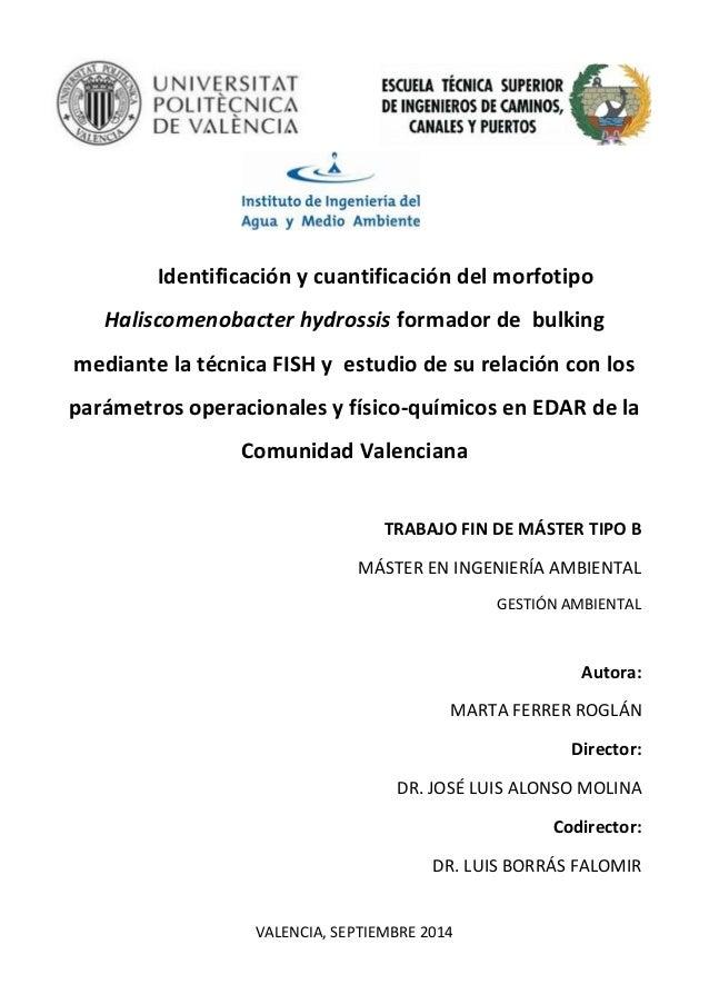 Identificación y cuantificación del morfotipo Haliscomenobacter hydrossis formador de bulking mediante la técnica FISH y e...