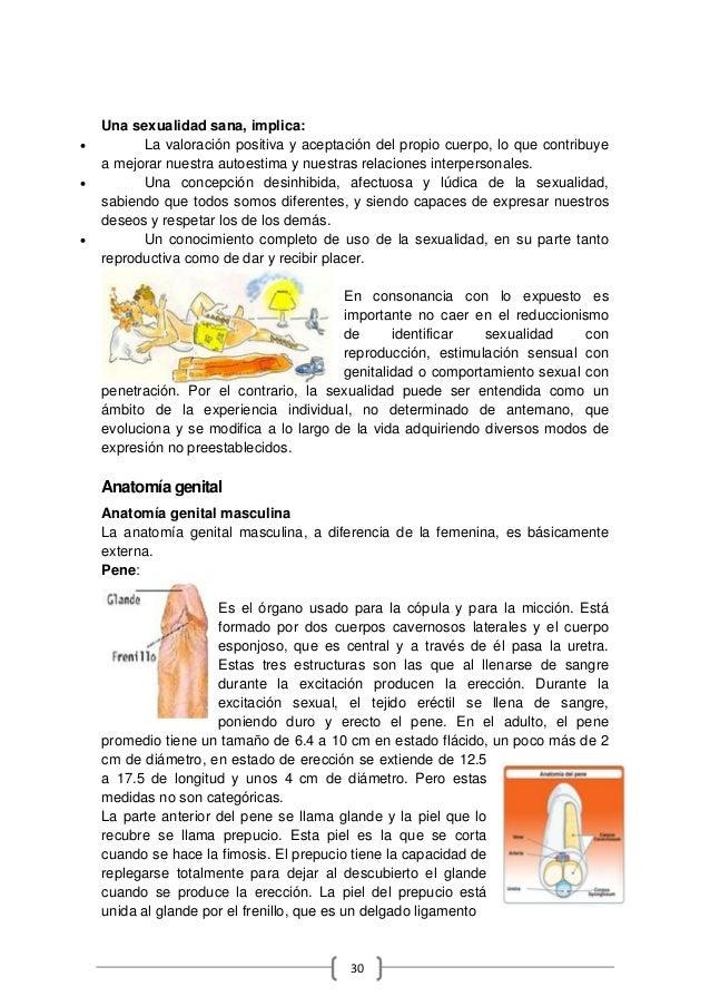 image.slidesharecdn.com/tesinavaleriapintosagrados...