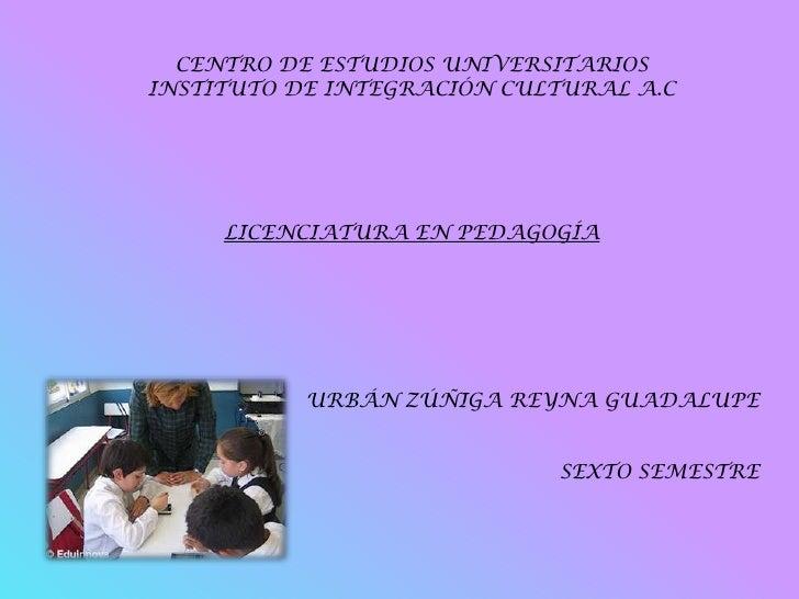 CENTRO DE ESTUDIOS UNIVERSITARIOS INSTITUTO DE INTEGRACIÓN CULTURAL A.C          LICENCIATURA EN PEDAGOGÍA                ...