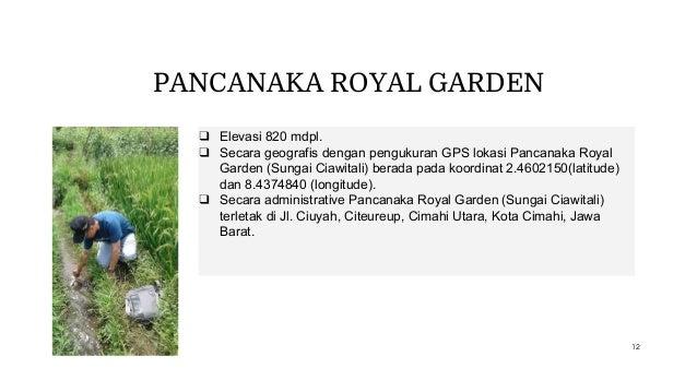 PANCANAKA ROYAL GARDEN ❑ Elevasi 820 mdpl. ❑ Secara geografis dengan pengukuran GPS lokasi Pancanaka Royal Garden (Sungai ...