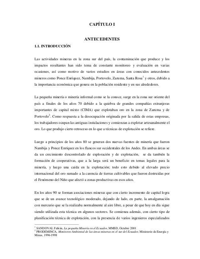 CAPÍTULO I  ANTECEDENTES 1.1. INTRODUCCIÓN  Las actividades mineras en la zona sur del país, la contaminación que produce ...