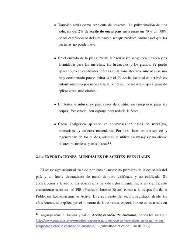 Tesis exportaci n de aceite esencial de eucalipto - Informacion sobre el eucalipto ...