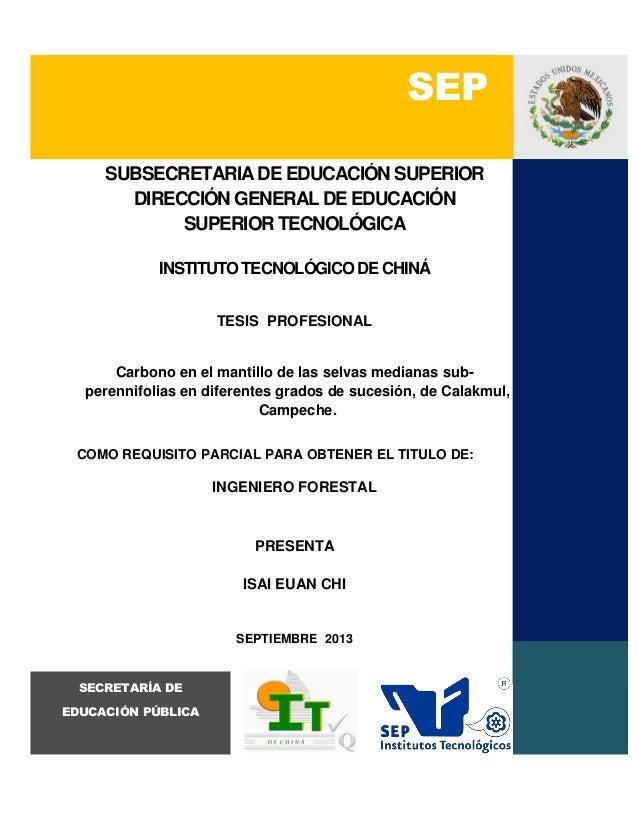 SEP SUBSECRETARIA DE EDUCACIÓN SUPERIOR DIRECCIÓN GENERAL DE EDUCACIÓN SUPERIOR TECNOLÓGICA INSTITUTO TECNOLÓGICO DE CHINÁ...