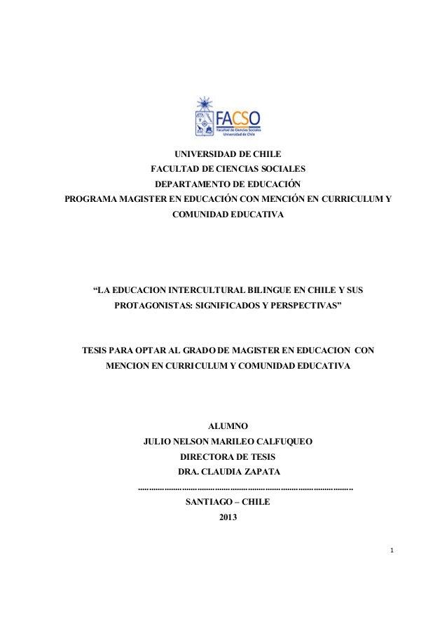 1 UNIVERSIDAD DE CHILE FACULTAD DE CIENCIAS SOCIALES DEPARTAMENTO DE EDUCACIÓN PROGRAMA MAGISTER EN EDUCACIÓN CON MENCIÓN ...