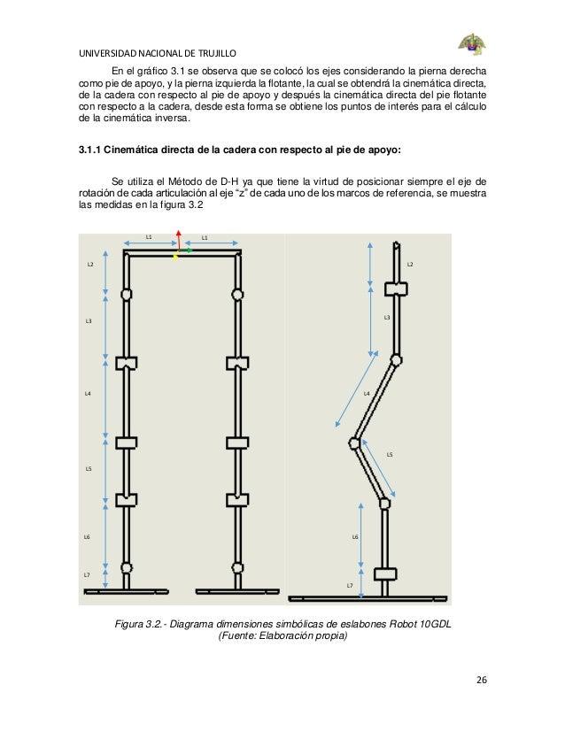 Atractivo Diagrama De Una Pierna Ilustración - Imágenes de Anatomía ...