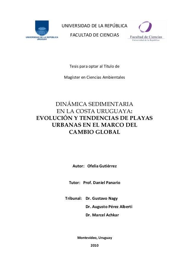 UNIVERSIDAD DE LA REPÚBLICA FACULTAD DE CIENCIAS Tesis para optar al Título de Magíster en Ciencias Ambientales DINÁMICA S...