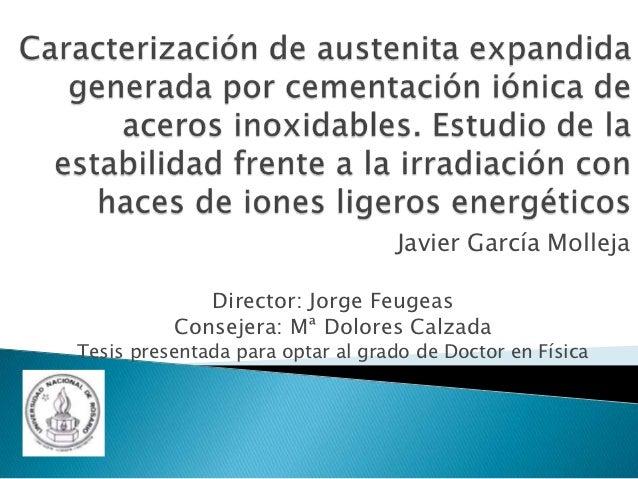 Javier García Molleja             Director: Jorge Feugeas          Consejera: Mª Dolores CalzadaTesis presentada para opta...