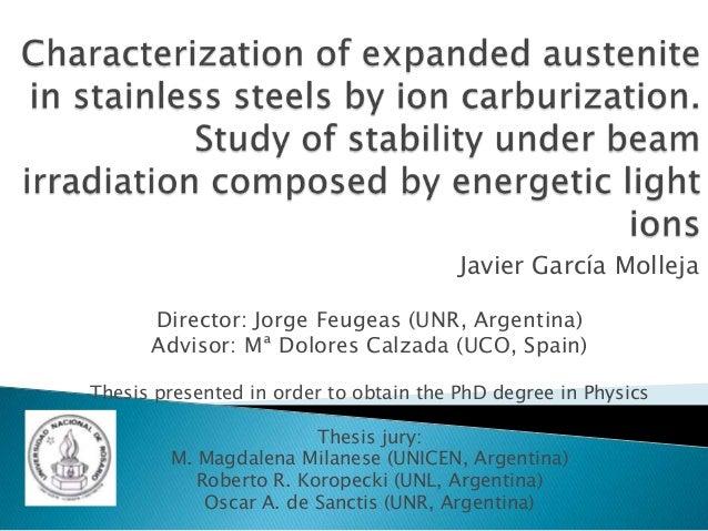 Javier García Molleja Director: Jorge Feugeas (UNR, Argentina) Advisor: Mª Dolores Calzada (UCO, Spain) Thesis presented i...