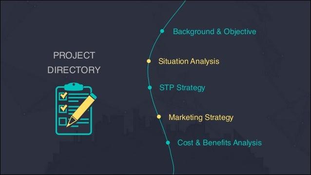 Tesla marketing plan in china - by Janet TANG