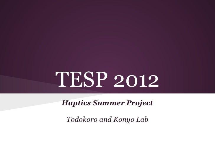 TESP 2012Haptics Summer Project Todokoro and Konyo Lab
