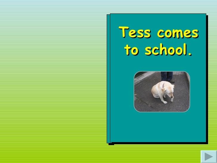 Tess comes to school.
