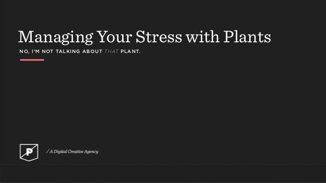 Managing Your Stress with Plants NO, I'M NOT TALKING ABOUT THAT PLANT.