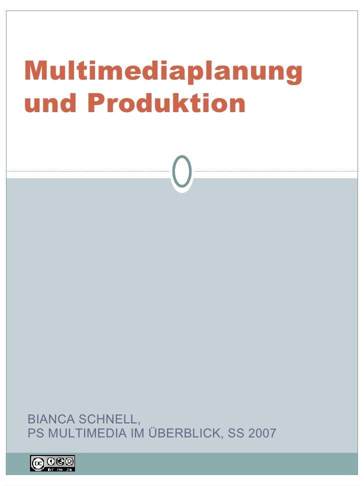 BIANCA SCHNELL,  PS MULTIMEDIA IM ÜBERBLICK, SS 2007 Multimediaplanung und Produktion