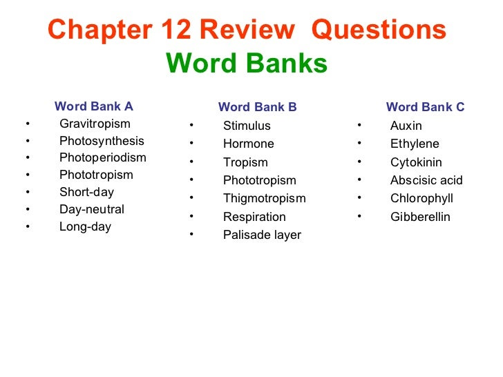 review questions chapter i View test prep - review questions for chapter 1 from badm 1121 at cuyahoga community college review questions for chapter 1 chapter 1: know key terms (not necessary to define for review.