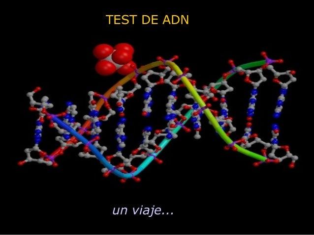 TEST DE ADN un viaje...