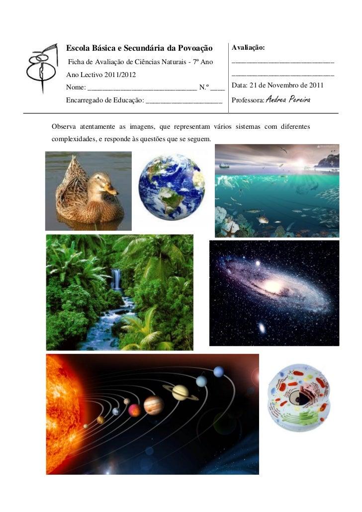 Escola Básica e Secundária da Povoação              Avaliação:     Ficha de Avaliação de Ciências Naturais - 7º Ano   ____...