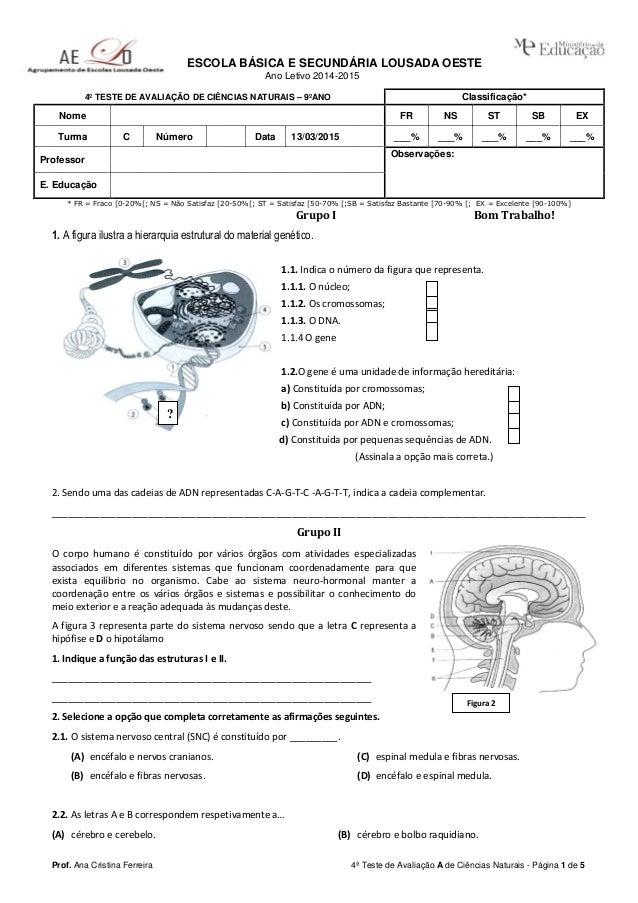 Prof. Ana Cristina Ferreira 4ª Teste de Avaliação A de Ciências Naturais - Página 1 de 5 ESCOLA BÁSICA E SECUNDÁRIA LOUSAD...