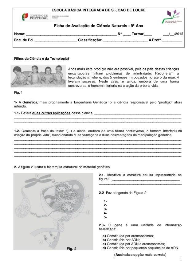 ESCOLA BÁSICA INTEGRADA DE S. JOÃO DE LOURE                           Ficha de Avaliação de Ciência Naturais - 9º AnoNome:...