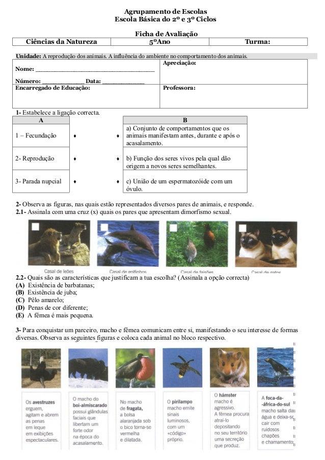 Agrupamento de Escolas                                      Escola Básica do 2º e 3º Ciclos                               ...