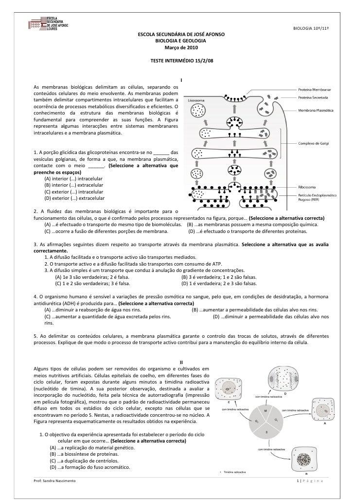 BIOLOGIA 10º/11º                                                 ESCOLA SECUNDÁRIA DE JOSÉ AFONSO                         ...