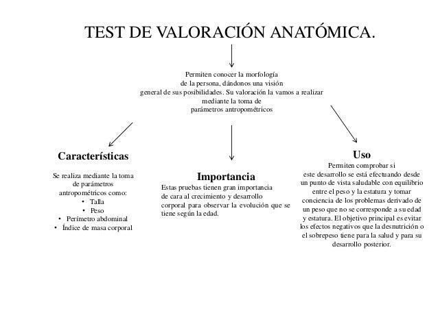 TEST DE VALORACIÓN ANATÓMICA. Permiten conocer la morfología de la persona, dándonos una visión general de sus posibilidad...