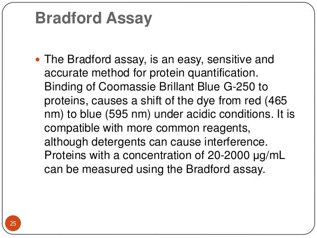 Bradford Assay 25  The Bradford assay, is an easy, sensitive and accurate method for protein quantification. Binding of C...