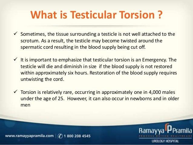 testicular torsion newborn. informatics testicular torsion; 2. torsion newborn o