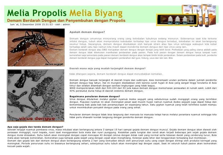 Melia Propolis   Melia Biyang Demam Berdarah Dengue dan Penyembuhan dengan Propolis Jum`at, 5 Desember 2008 15:31:53 - ole...