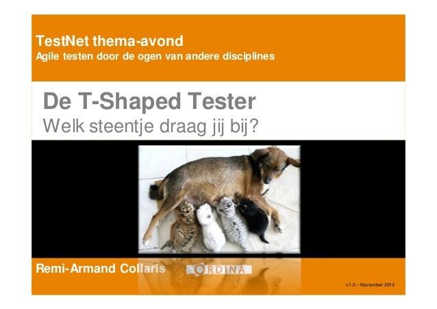 TestNet thema-avond Agile testen door de ogen van andere disciplines  De T-Shaped Tester Welk steentje draag jij bij?  Rem...
