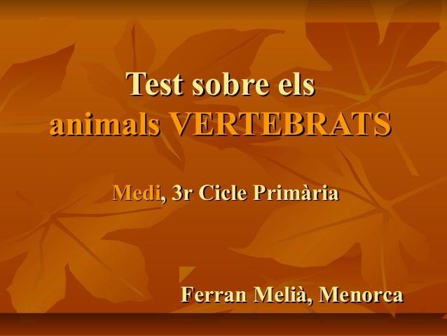 Test sobre elsTest sobre els animals VERTEBRATSanimals VERTEBRATS MediMedi, 3r Cicle Primària, 3r Cicle Primària Ferran Me...