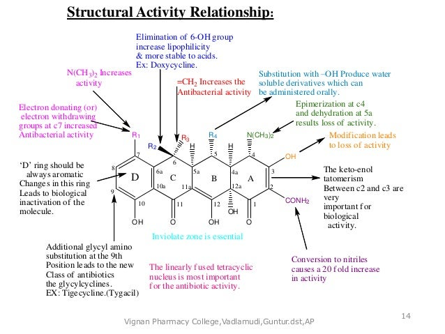 doxycycline structure activity relationship