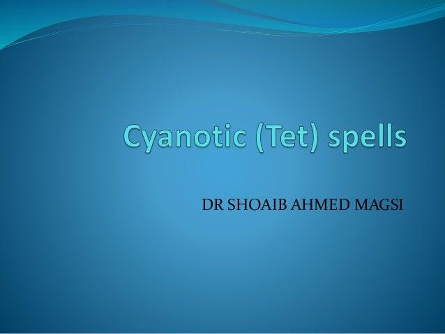 DR SHOAIB AHMED MAGSI