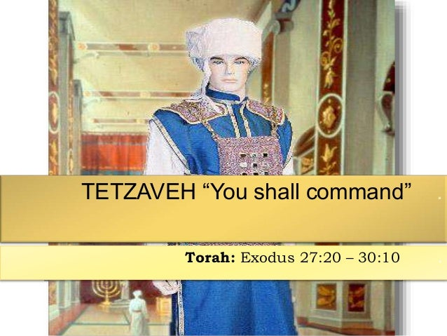 Image result for tetzaveh torah portion images