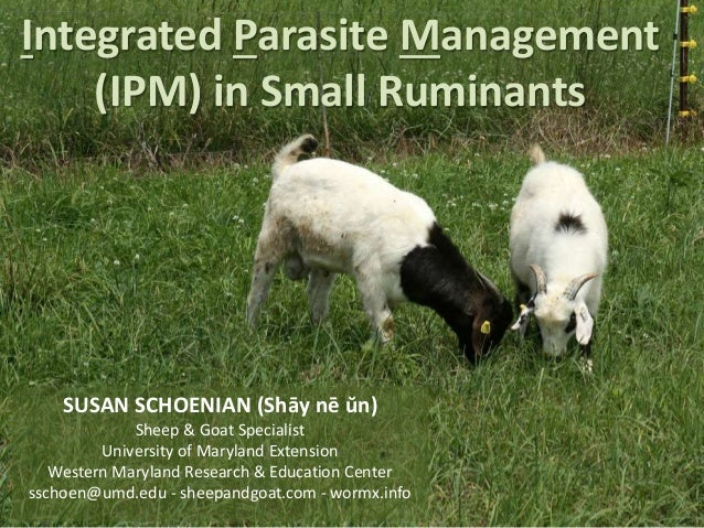 IPM in Small Ruminants