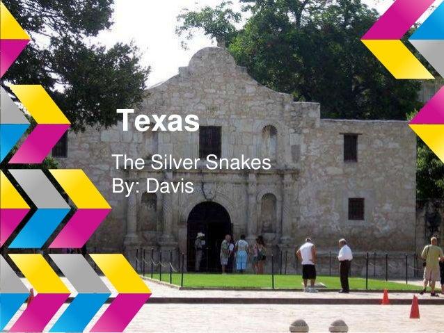 TexasThe Silver SnakesBy: Davis