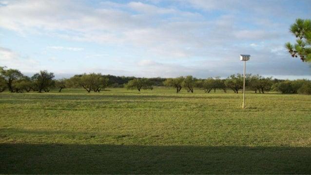 ... Texas Ranch; 12.