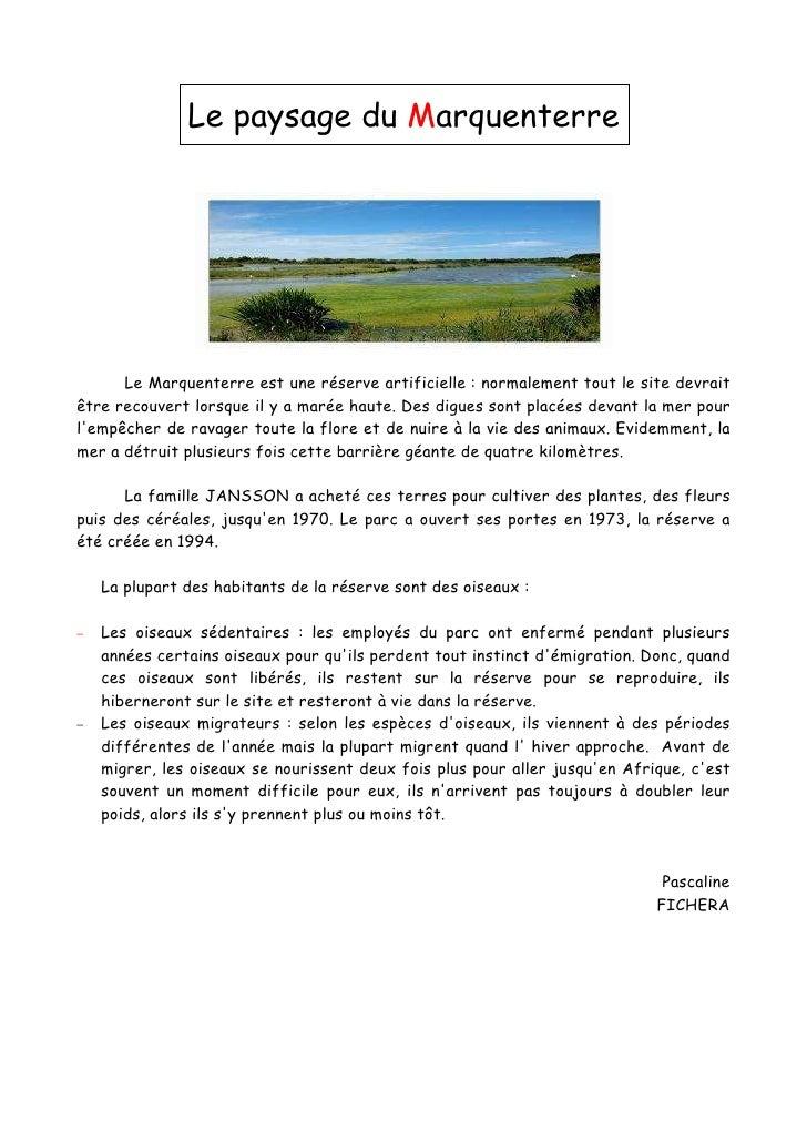 Le paysage du Marquenterre           Le Marquenterre est une réserve artificielle : normalement tout le site devrait être ...