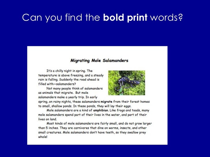 Can you find the  bold print  words?