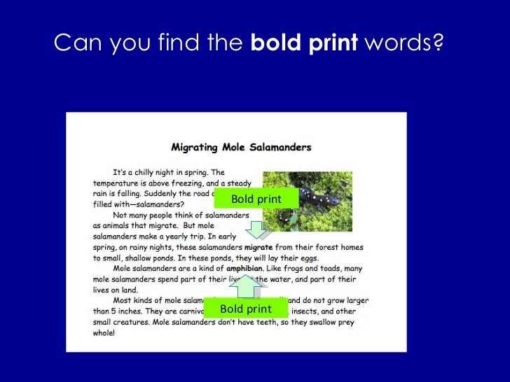 Can you find the  bold print  words? Bold print Bold print