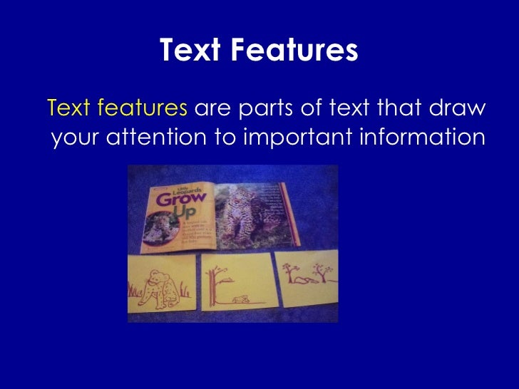 Text Features <ul><li>Text features  are parts of text that draw your attention to important information </li></ul>