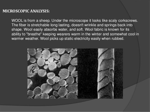 MICROSCOPIC ANALYSIS: WOOL is from a sheep. Under the microscope it looks like scaly corkscrews. The fiber is stretchable ...