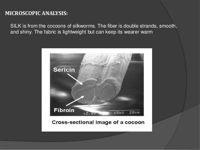 MICROSCOPIC ANALYSIS: SILK is from the cocoons of silkworms. The fiber is double strands, smooth, and shiny. The fabric is...