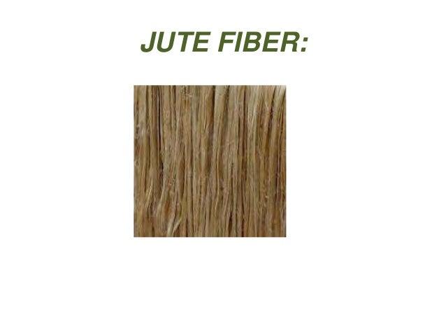 JUTE FIBER: